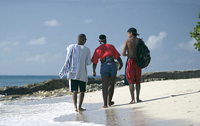 UVI students on the beach.
