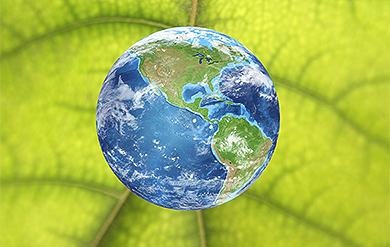 Photo of the Earth on a Leaf