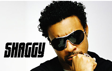 Reggae and dancehall artist Shaggy
