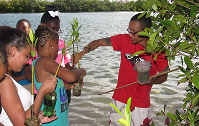 Students participate in Marine and Environmental Science Learning