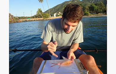 Marine Biology student takes great interest in identifying a fish.