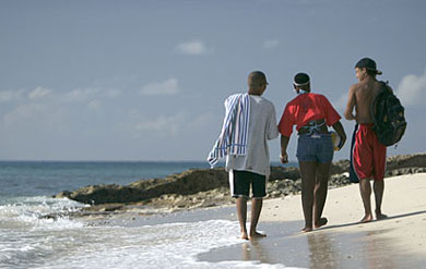 UVI students on a beach