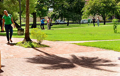 Students walk to class on the University's Albert A. Sheen Campus on St. Croix